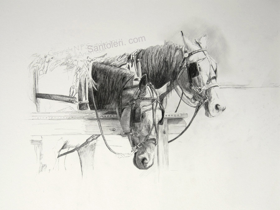 Framed original pencil drawing by nicholas p santoleri amish horses study santoleri
