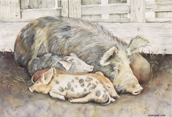 Priscilla and Piglets Santoleri limited Edition Prints from Watercolor Painting