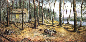 Woodland Visitors by Santoleri limited Edition Print from Watercolor Painting