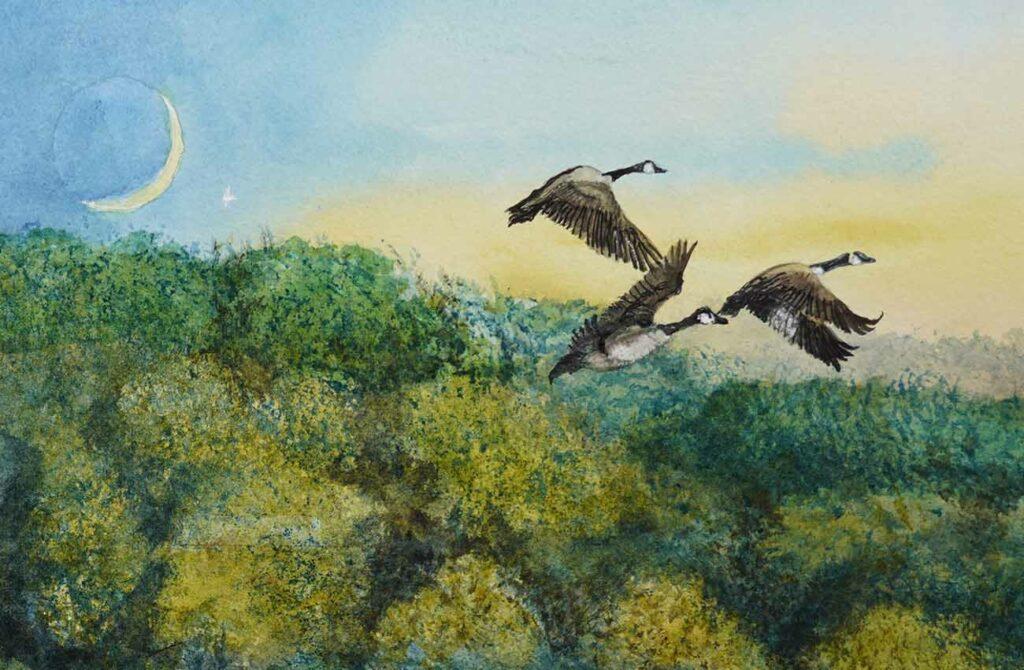 Daybreak at Edgmont Detail of Geese